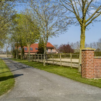immobilienfotografie_drohnen_g11